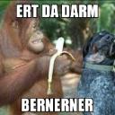 mrbernerner