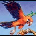 death-parrot
