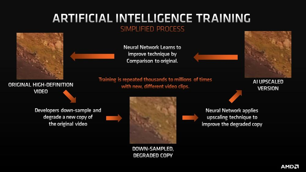 The AI Training Workflow
